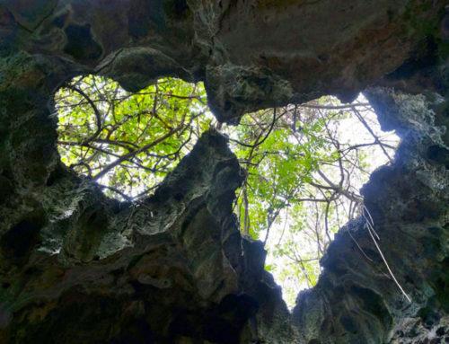 Tongatapu, die Anahulu-Höhlen von Vaea