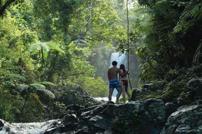 Vanua Levu und Taveuni, die Garteninsel