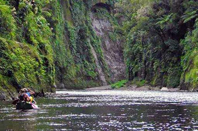 3 Day Whanganui River Guided Canoe, Whakahoro to Pipiriki