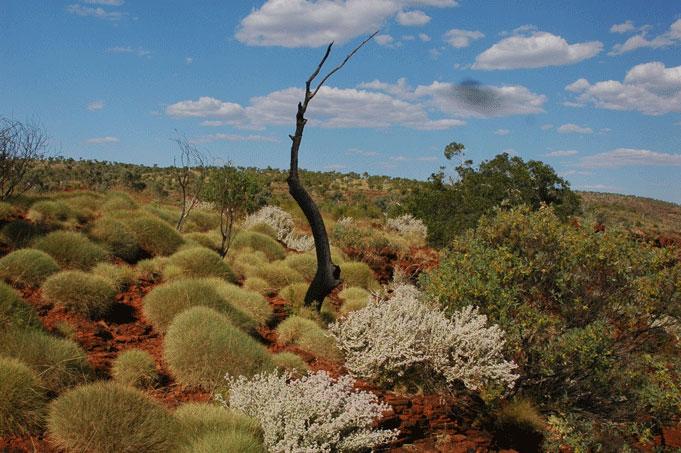 Grandioses Western Australia, ursprünglich und wild