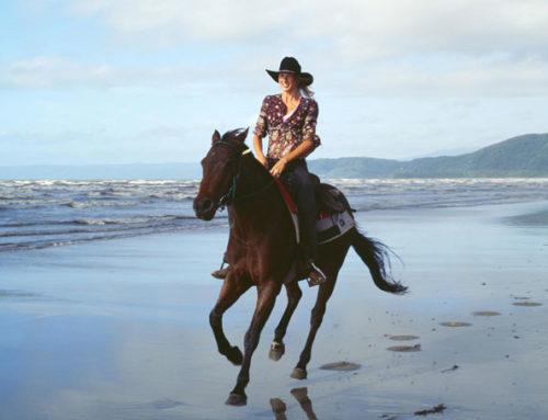 Ride Port Douglas, unweit vom Daintree National Park