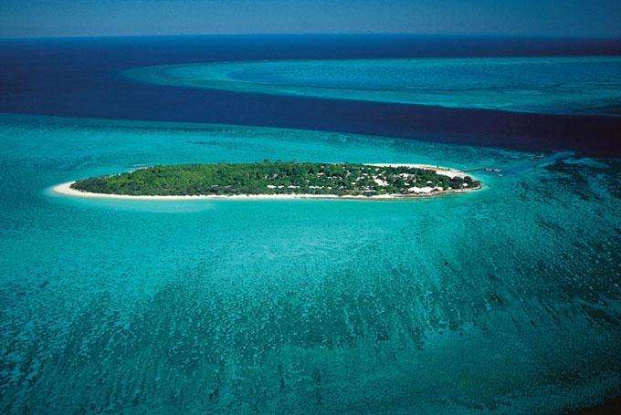 Heron Island: Tauchen und Tierwelt