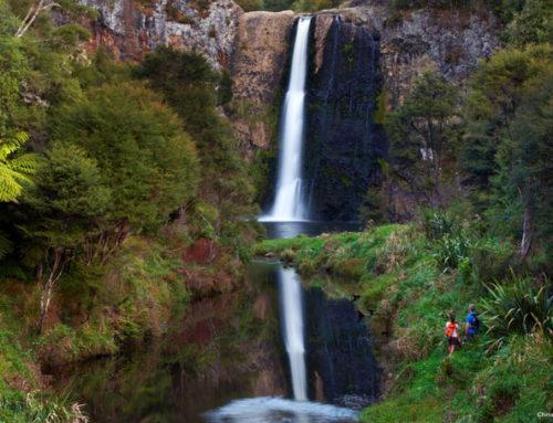 Purakaunui-, McLean- und Catlins Wasserfälle, Otago Region
