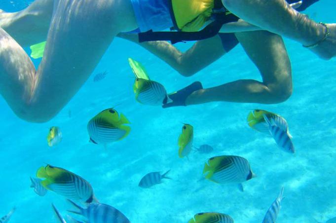 Schnorchel Safari auf One Foot Island, Aitutaki