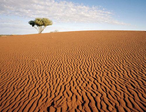 Urlaub Australien: Sanddüne im Outback