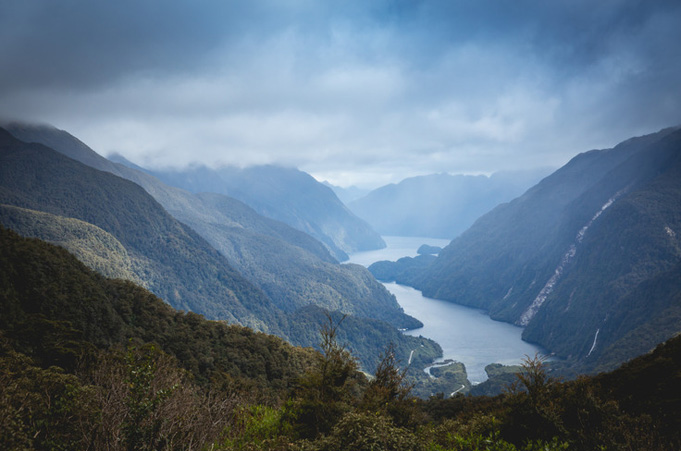 Doubtful Sound Wilderness Cruise, Tagestour